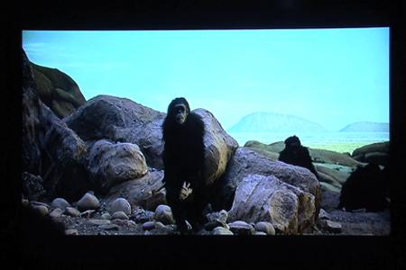 Weidner-Kubrick5