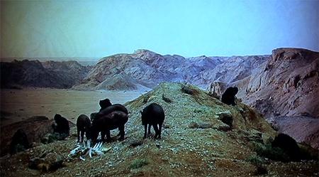 Weidner-Kubrick7